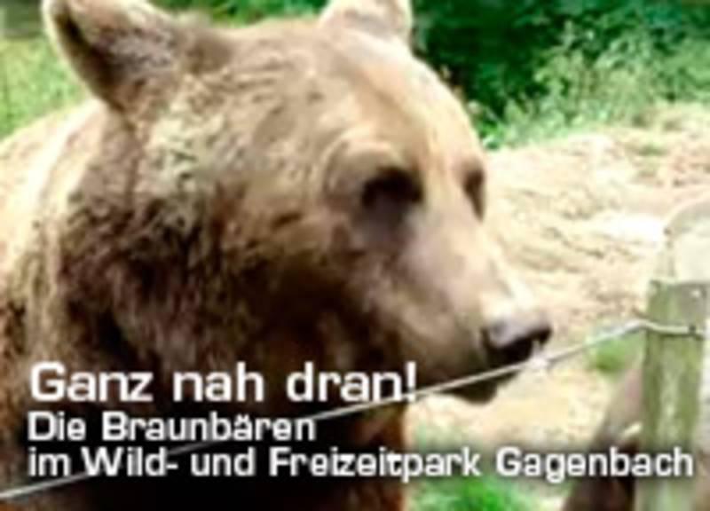bauer direktvermarktung im westerwald